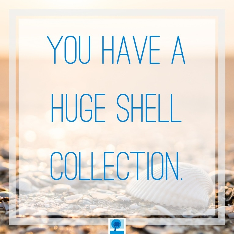 You have a huge shell collection | Island Real Estate