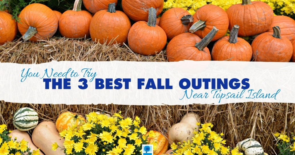 You Need to Try The 3 Best Fall Outings Near Topsail Island | Island Real Estate