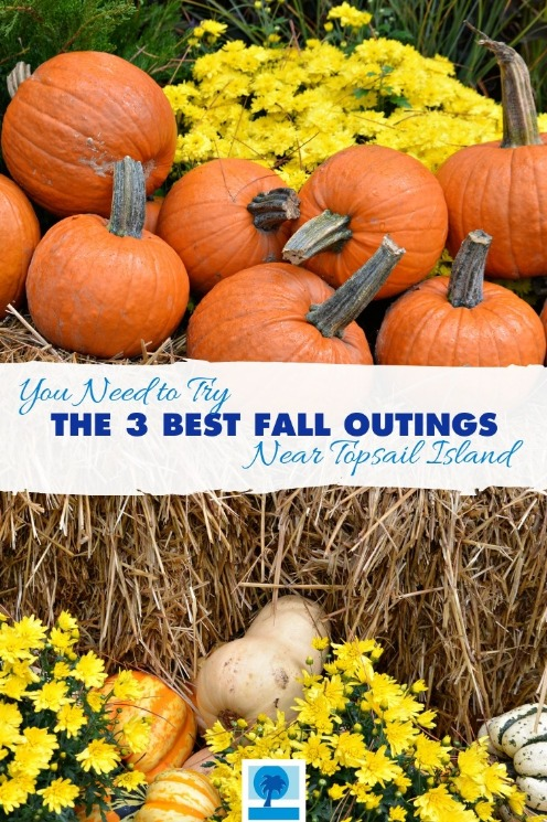 You Need to Try The 3 Best Fall Outings Near Topsail Island