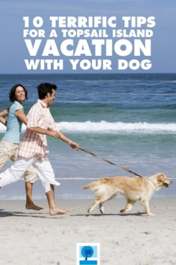 10 Terrific Tips for a Topsail Island Vacation with Your Dog | Island Real Estate