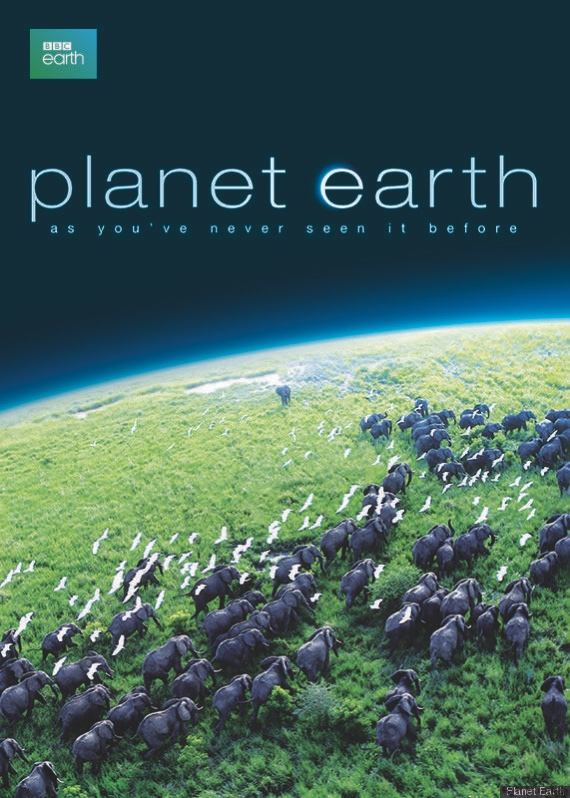 Planet Earth | Island Real Estate