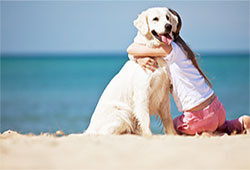 Pet Friendly Topsail Island Vacation Rentals