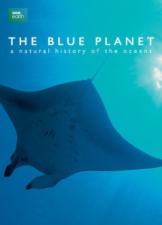 The Blue Planet | Island Real Estate